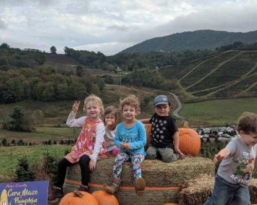 Ashe Co. Fall Festival